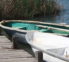Reeds, Rowing Boats and Old Jetty at Dalyan by taiche