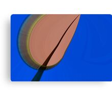 Pod Abstract Canvas Print