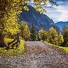 Wandering a Beautiful Way  by Boston Thek Imagery