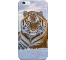 Winter's Tiger iPhone Case/Skin