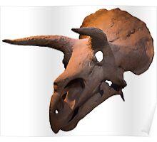 Triceratops dinosaur skull Poster