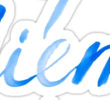 Carpe Diem - seize the day Sticker