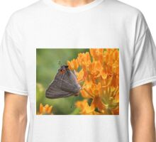 Gray Hairstreak Classic T-Shirt