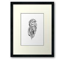S.A.A Framed Print