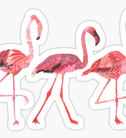 3 Tumblr Flamingos Sticker