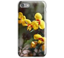 Dillwynia retorta (Egg & Bacon Plant) + fly iPhone Case/Skin