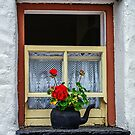 Traditional Cottage Window - Bunratty - County Clare - Ireland by TonyCrehan