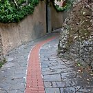 Follow The Red Brick Road by phil decocco