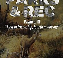 Parks and Recreation by icetown