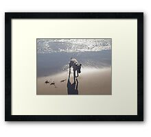 Cold water with my ball Framed Print