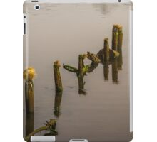 Waterfront Property iPad Case/Skin