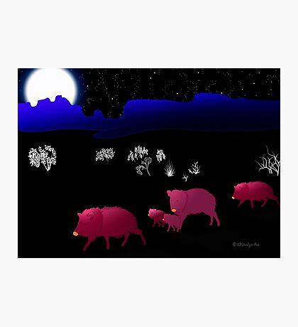 They Walk By Night Photographic Print