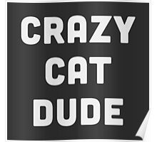 Crazy Cat Dude Poster