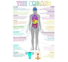 The Organs Photographic Print