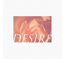 Desire, Rose Colours And Their Meaning Photographic Print
