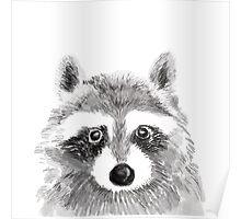 The Innocent Raccoon Poster