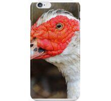 Domestic Duck iPhone Case/Skin