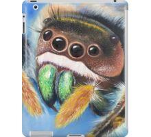 Phidippus Audax Memorial iPad Case/Skin