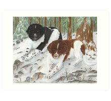 Landseer Newfoundland Dogs Cathy Peek Pines Snow Art Print