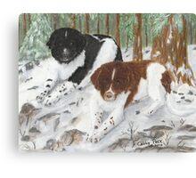 Landseer Newfoundland Dogs Cathy Peek Pines Snow Canvas Print