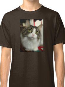 Sweet Cat's Face Classic T-Shirt