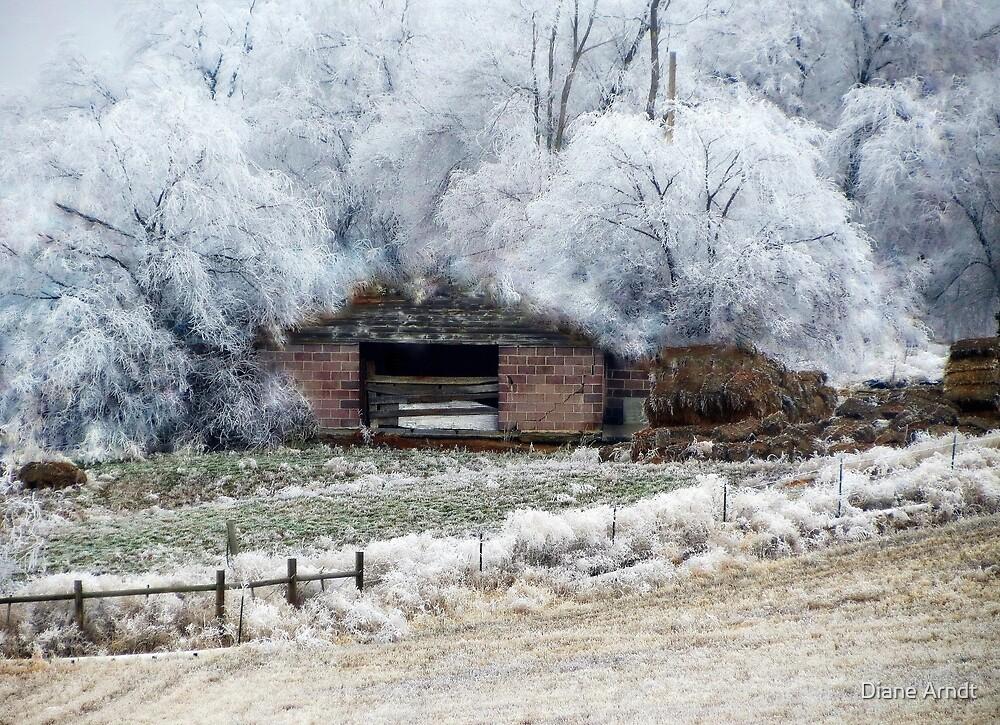 Filigree Winter by Diane Arndt
