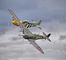 The Old Flying Company -  Ferocious Frankie, And MH434 by Colin  Williams Photography
