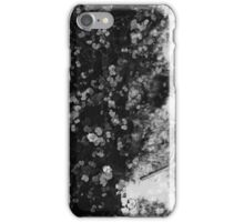 Pond Refections iPhone Case/Skin
