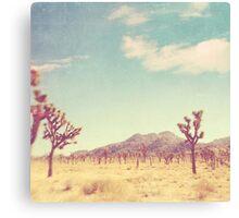 Vintage California Desert Canvas Print