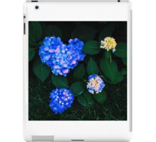 Love Nature iPad Case/Skin