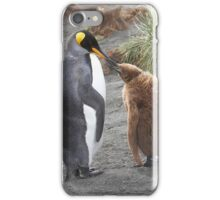 King Penguin and chick ~ Meal Time iPhone Case/Skin