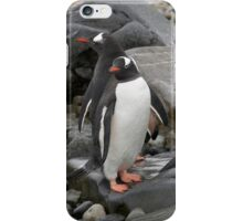 "Gentoo Penguins ~ ""Umm........ Which Way"" iPhone Case/Skin"
