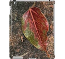 Fallen Leaf on Camphor Trunk iPad Case/Skin