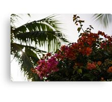 Dreaming of Tropical Gardens - Bougainvilleas and Palm Trees Canvas Print