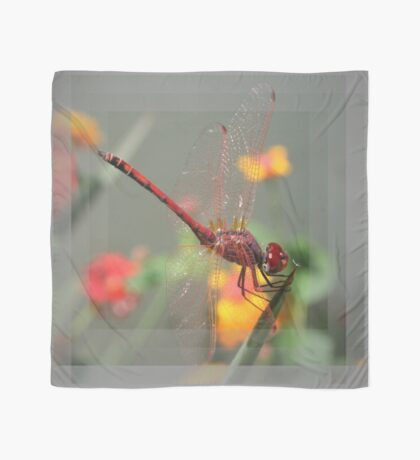 Red Skimmer or Firecracker Dragonfly With Lantana Background Scarf