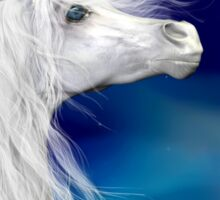 Star Gazer .. White Stallion Sticker