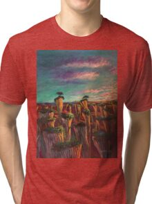 Separate Worlds Tri-blend T-Shirt