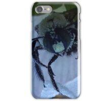 A Brief Hibernation iPhone Case/Skin