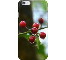 """"""" Raindrops On Holly """" iPhone Case/Skin"""