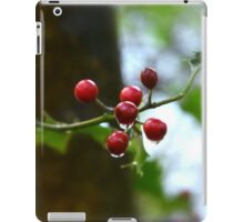 """ Raindrops On Holly "" iPad Case/Skin"