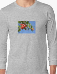 Pomegranate Flowers And Blue Skies Long Sleeve T-Shirt