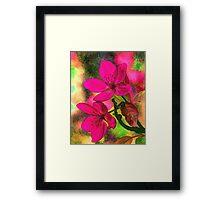 Flowers pink rosa orange Framed Print