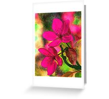Flowers pink rosa orange Greeting Card