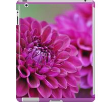Purple dahlia flowers iPad Case/Skin