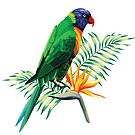 Colorful Parrot & Birds Of Paradise  by artonwear