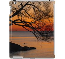 Colorful Quiet Sunrise on the Lake  iPad Case/Skin