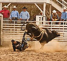 Rodeo Cowboy is Thrown from His Bull by Buckwhite