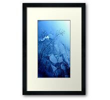 A different Perspective.........Icy Lake Framed Print