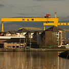 Harland and Wolff cranes from the River Lagan by Jon Lees