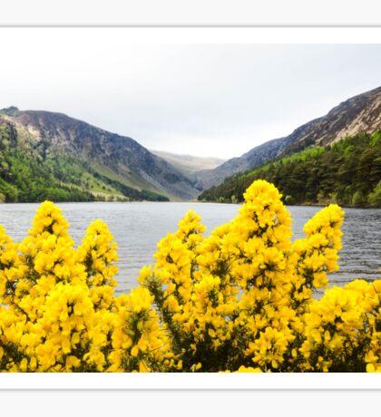 Ireland Scene  Sticker